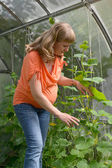 The pregnant woman works in the greenhouse — Stock Photo