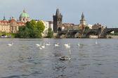 Prag. utsikt över vltava floden och karlov bron — Stockfoto