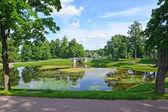 Летний пейзаж с прудом в дворцовом парке Гатчины — Стоковое фото