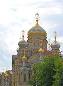 St. Petersburg. Church of the Assumption of the Blessed Virgin — Стоковое фото