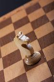 Chess piece knight — Stock Photo