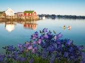 Classic Norway view — Stock Photo