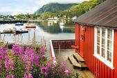 Norway scenery — Stock Photo