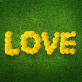Love made from dandelions — Stock Photo