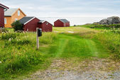 норвегия декорация — Стоковое фото