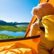 Teddy bear camping — Stock Photo