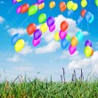 Balloons outdoors — Stock Photo