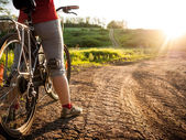 Woman cycling in summer — Stock Photo