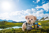 Teddy bear hiking — Stok fotoğraf