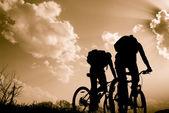 Siluety cyklistů — Stock fotografie