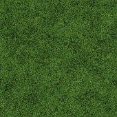 Seamless grass texture — Stock Photo