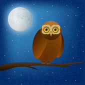 Owl at night  — Stock Vector