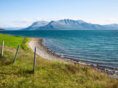 Classical Norway scenery — Stock Photo