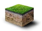 Taglio del terreno con erba — Foto Stock