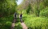 Couple cycling — 图库照片
