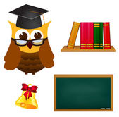 Education set  — Stock Vector