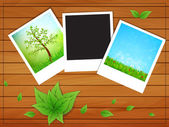 Photos with nature background — Stock Vector