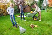 家庭ガーデニング — ストック写真