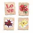 Stock Photo: Set of vintage papers with flowers
