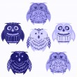 Set of blue owls — Stock Photo