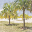 Caribbean beach with palms, paradise island — Стоковая фотография