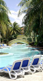 Caribbean beach with palms, paradise island — Stock Photo