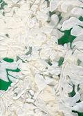 Textile Fragment Verzierung — Stockfoto