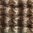 Tiger pattern fabric - Stock Photo