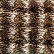 tela del patrón del tigre — Foto de Stock