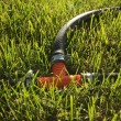 Drip irrigation — Stock Photo