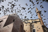 Şerafettin Mosque, Konya — Stock Photo