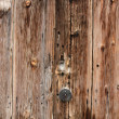 Wood door — Stock Photo #33013453