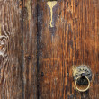 Wood door — Stock Photo #33013631