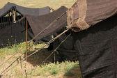 Nomadic tent — Stock Photo