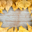 A frame made of autumn yellow leaves — Stock Photo