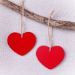 Two wooden red hearts hanging on branch — Stock Photo