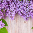 Frame of lilas on wooden surface — Stock Photo