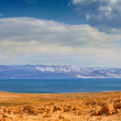 Dead Sea in the desert with mountain view — Stock Photo
