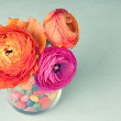 Pink and orange colorful ranunculus in a vase decorated by a swe — Stock Photo