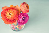 Pink and orange colorful ranunculus in a vase decorated by a swe — Foto Stock