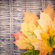An yellow bunch of autumn leaves on wicker background — Stock Photo