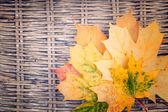 Eine gelbe haufen herbst blätter auf wicker-hintergrund — Stockfoto
