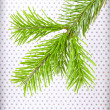 Stock Photo: Branchlet of christmas tree in corner on polkdot backgroun