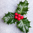 Christmas holly with red berries on silver holyday background — Stock Photo