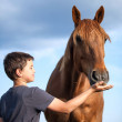A happy child feeding a hungry and honorable horse — Stock Photo #49337997