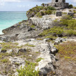Tulum Mayan Ruins. — Stock Photo #45218401
