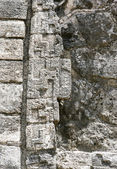 Walls details of a stone surface in an ancient Maya building. — Stock Photo