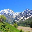 Caucasus mountains Dombai — Stock Photo #12546409