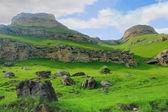 Caucasus green mountains — Stock Photo