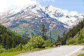 Caucasus mountains in Russia — Stock Photo